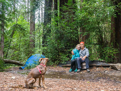 Big Sur edited pics-96 (MufasaPhoto) Tags: backpacking bigsur camping ocean redwoods thrive