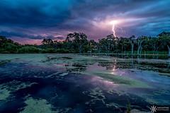 Country storm (Dreamtime Nature Photography) Tags: storm lightning thunder countrystylecaravanpark glenaplin qld queensland australia australie canon canonaustralia canon7dm2 7dmii dreamtimenaturephotography nature