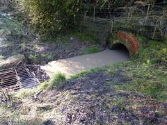 Time (Rhubus) Tags: stream water flow culvert wet pipe beneath old smell rubbish tip silly