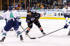 """Kansas City Mavericks vs. Florida Everblades, February 18, 2018, Silverstein Eye Centers Arena, Independence, Missouri.  Photo: © John Howe / Howe Creative Photography, all rights reserved 2018 • <a style=""""font-size:0.8em;"""" href=""""http://www.flickr.com/photos/134016632@N02/40387906401/"""" target=""""_blank"""">View on Flickr</a>"""