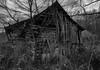 Abandoned Barn (A  Train) Tags: nikond750 nikon abandoned barn blackandwhite rural fallingdown log kentucky hazelgreen hazelgreenkentucky wolfecounty overgrown