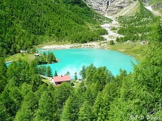 Lac Palü - Alp Grüm 2