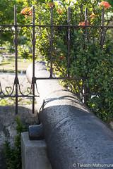 Fort San Pedro Cebu (takashi_matsumura) Tags: cebucity centralvisayas philippines fort san pedro cebu nikon d5300 sigma 1750mm f28 ex dc os hsm