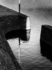 Exit from Highway (Thomas Listl) Tags: thomaslistl blackandwhite noiretblanc biancoenegro river water reflection mirror curves shadows main shore bank diagonal graphical geometry vsco würzburg