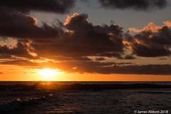1 29 Poipu Beach 2018-01-29 059-LR (jamesabbott1963) Tags: canon70d kauaipoipu koloa hawaii unitedstates us