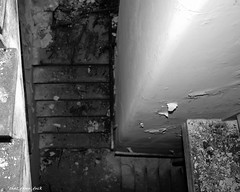 The Stairwell To Hell (that_damn_duck) Tags: blackwhite monochrome stairs stairwell abandoned urbex urbanexplorer decaying debris pointofview southcarolinamentalhospital asylum hospital bw blackandwhite
