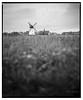 Lytham_RB67_delta-5 (D_M_J) Tags: lytham windmill wind mill landscape fylde coast north west lancashire uk film camera roll 120 medium format 6x7 mamiya rb67 180mm sekor ilford delta 100 pro kodak hc110 epson v850 vuescan black white bw blackandwhite mono monochrome