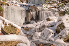 Cole Run Falls in Winter (mvos18) Tags: daylight natural landscape winter sigma nature water forbes spring cole canon colerunfalls snow light rocks longexposure running rhodedendron trigger sigma35mmart run forest hiking pennsylvania canon7dmkii snowy laurel waterfall pluto mountain