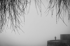 I've been here before (bluechameleon) Tags: sharonwish alone barebranches blackandwhite bluechameleonphotography branches bw emptiness fence fog melancholic nature person seawall silhouette vancouver winter ngc