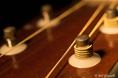 36/365 In Tune (crezzy1976) Tags: nikon d3300 nikkor40mm crezzy1976 photographybyneilcresswell indoors macromonday hmm guitar strings music instrument 365 365challenge2018 day36 closeup