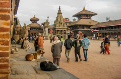 Katmandu (laura.mnz) Tags: nepal viaggio oriente culto religione induismo persone piazza cani edificio