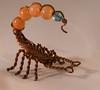 Scorpio (♛Happy 7th Birthday Shizandra♛) Tags: odc whatsyoursign scorpio metal beads lightbox orange copper wire glass