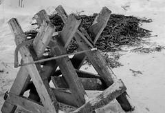 IMG_0088 (www.ilkkajukarainen.fi) Tags: suomi suomi100 finland nature luonto finlande scandinavia eu europa happy life travel traveling porkkala porkkalan niemi talvi winter lumi snow blackandwhite mustavalkoinen uusimaa monochrome shaw saha pukki havut