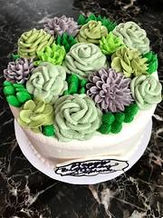 Succulent Cake (mssophiele) Tags: succulent torrancebakery cake custard bananabread buttercream buttercreamart