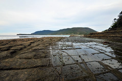 Tessellated Pavement | Eaglehawk Neck, Tasmania (Ping Timeout) Tags: tasmania tassie state australia vacation holiday june 2017 island south commonwealth oz bass strait hobart tas tessellated pavement flat rock stone sandstone nature rectangle lufra pirates bay drive eaglehawk neck outdoor loaf form formation tasman peninsula wonder seascape sea ocean water coast wide angle 1024 scene sight scenery sky cloud skies morning afternoon geology landscape grass green