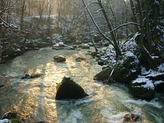 Winter-Morgensonne (Jörg Paul Kaspari) Tags: irrel dieprüm fliesgewässer eifel naturpark südeifel gewässerlandschaft flus river winter