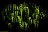 Geometria vegetal. 01. Puerto del Rosario, Fuerteventura, diciembre 2017. (Jazz Sandoval) Tags: 2017 elfumador españa exterior enlacalle amarillo beautiful belleza botánica contraste color canarias calle curiosidad colour curiosity city ciudad cienciasnaturales digital day dìa fotografíadecalle fotodecalle fotografíacallejera fotosdecalle fuerteventura green cactus islascanarias ilustración jazzsandoval jardín luz light negro nero black naturaleza puertodelrosario streetphotography streetphoto sombras verde vegetal vegetable yellow