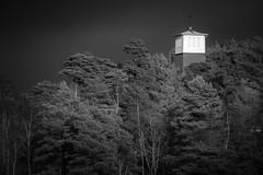 Watch-tower (englishgolfer) Tags: storm church bw black white trees sweden sverige åh bohuslän nikon d3100