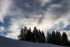 Spectateurs charmés (smitten audience) (Larch) Tags: landscape scenery winter hiver janvier january mountain alps alpes spectateur spectator cloud afternoon aprèsmidi snow tree silhouette audience