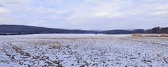 January/ január (A. Meli) Tags: landscape landschaftsbild winter tájkép természet természetben tél nature natur january január januar snow hó schnee mountain hegység berge
