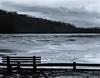 Frozen Lake, Montgomery, New York (nsandin88) Tags: schneider ishootfilm ny newyork exploration lake film developedathome husdsonvalley viewcamera 4x5 toyo aristaedu100 schneiderkreuznach cold park explore winter snow ice