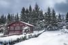 Paisaje invernal (Urugallu) Tags: paisaje nevado nieve sanisidro luz color nubes arboles pinos casa urugallu joserodriguez canon flickr 70d asturias