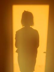 039/365: sunset silhouette (Michiko.Fujii) Tags: warm warmphotographs selfportrait selfstudy studyoftheself shadows shadowsandlight sunset yellowandorange yellow poeticshadows visualpoetry silhouettes sunfilledsilhouettes