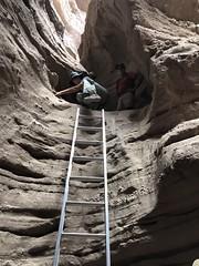 2018-02-15 GOPS Geology Hike (136) (MadeIn1953) Tags: 2018 201802 20180215 greatoutdoorsgo go gops greatoutdoorspalmspringsgops hiking coachellavalley california riversidecounty meccahills paintedcanyon laddercanyon slotcanyon ladder