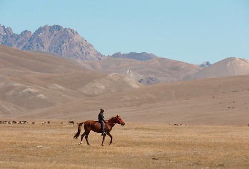 Ici, chacun sait monter à cheval