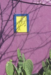Purple Wall with cacti (lesraquettes) Tags: wall purple streetphoto cacti southwestusa shadows abstract garish utah