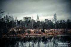 MDD_8876 (Dmitry Mahahurov) Tags: nikon d300 mahahurov tosno