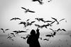 Zürich (SinoLaZZeR) Tags: 欧洲 瑞士 苏黎世 苏黎世湖 黑白 街头摄影 纪实摄影 鸟 人 europa europe switzerland schweiz zurich zürich see seaside lake bird birds street streetphotography schwarzweiss streetlife blackwhite blackandwhite bw monochrom monochrome fujifilm fuji finepix xpro2 xf 23mm people vogel