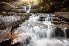 Warm Flow || TERRACE FALLS || BLUE MOUNTAINS (rhyspope) Tags: australia aussie nsw new south wales canon 5d mkii falls water waterfall terrace blue mountains rhys pope rhyspope creek stream river green forest woods nature rocks flow hazel brook lawson