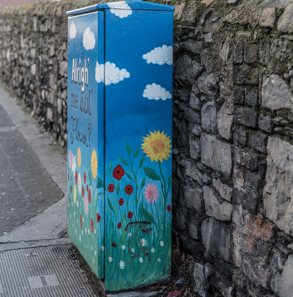 ALRIGHT ME AUL FLOWER BY ALISON O'GRADY [PAINT-A-BOX STREET ART AT RINGSEND BRIDGE IN DUBLIN]-135460