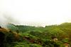 Good Morning from Halgolla, Sri Lanka (Dumi Jay) Tags: halgolla teaestate srilanka mountains sunrise mountainvillage