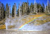 Rainbow over Grand (Chief Bwana) Tags: wy wyoming rainbow grandgeyser uppergeyserbasin turbangeyser ventgeyser psa104 chiefbwana