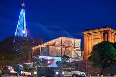 MEC & Christmas Tree (Luis_Garriga) Tags: museo emiliocaraffa cordoba argentina longexposure lights noche cielo christmastree urban city cars a6000
