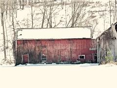 Snowy Day in Vermont (Professor Bop) Tags: winter newengland vermont vt olympusem1 professorbop drjazz rural olympusm75mmf18 mosca