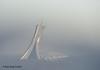 La plus haute tour inclinée du monde se métamorphose (anjoudiscus) Tags: roseange d800 nikkor28300mm stadeolympique architecture travaux grue atmosphère montréal canada tour girafe olympicstadium
