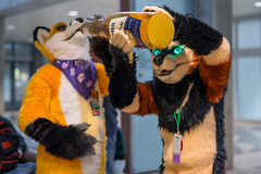 DSC01549 (Kory / Leo Nardo) Tags: furry fursuit suiting dance party dj con convention further confusion fc san jose marriott center 2018 fc2018 pupleo leo kory fur costume costuming cosplay animals