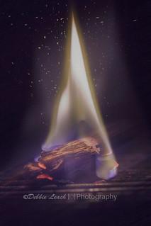 flame (macro mondays)