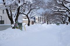 A winter morning (しまみゅーら) Tags: fujifilm xe2 xf 35mm f14 ebc fujinon astia oneday shimokita hachinohe train trip