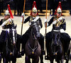 Household Cavalry (Bernie Condon) Tags: army britisharmy householdcavalry cavalry military horses mounted roy bluesroyals lifeguards