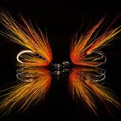 Salmonfly (bfossli) Tags: salmonfly flyfishing fluefiske fluebinding flytying fishing fiske