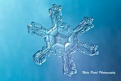IMG_3288 (nitinpatel2) Tags: snowflakes winter snow macro crystal nature nitinpatel
