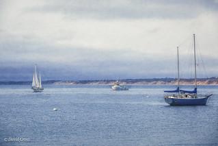 On Monterey Bay (HSS)