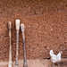 Three pestles and a chicken