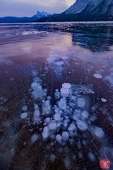 Bubbles everywhere (Kasia Sokulska (KasiaBasic)) Tags: canada alberta rockies abraham lake ice methane bubbles dawn winter cold nature phenomenon reflections mountains