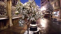 The snow and the city (Fernando F. Fernandez) Tags: españa asturias principadodeasturias europa night noche nieve