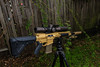 Canon EOS-1D X-EF16-35mm f-2.8L II USM-January 15, 2018-26.jpg (chris.hoesel) Tags: taupe ral8000 coyote microslick lmt mws dmr cerakote 308win sr25 sass